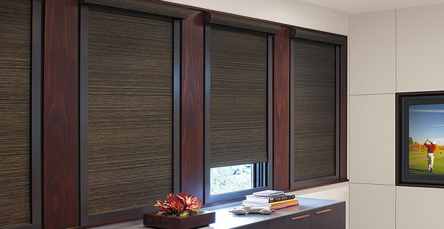 Roller Roll Up Shades Alpha Blinds Amp Interiors